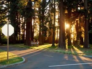 Maud Williamson State Park